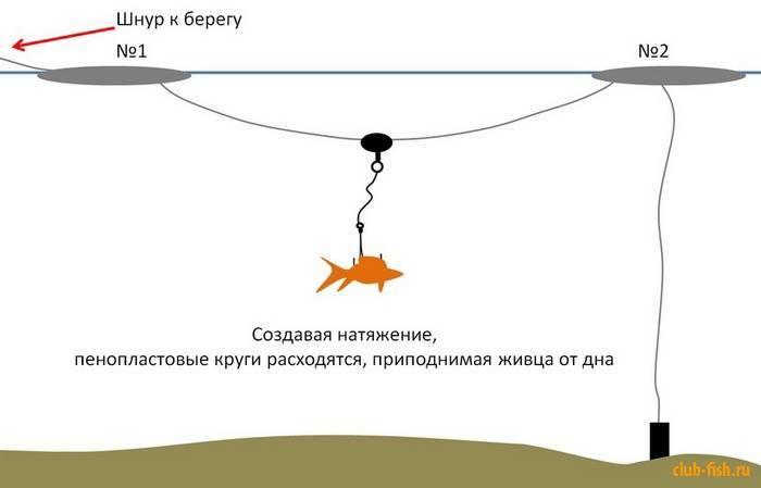 Особенности и тонкости ловли судака на живца в россии