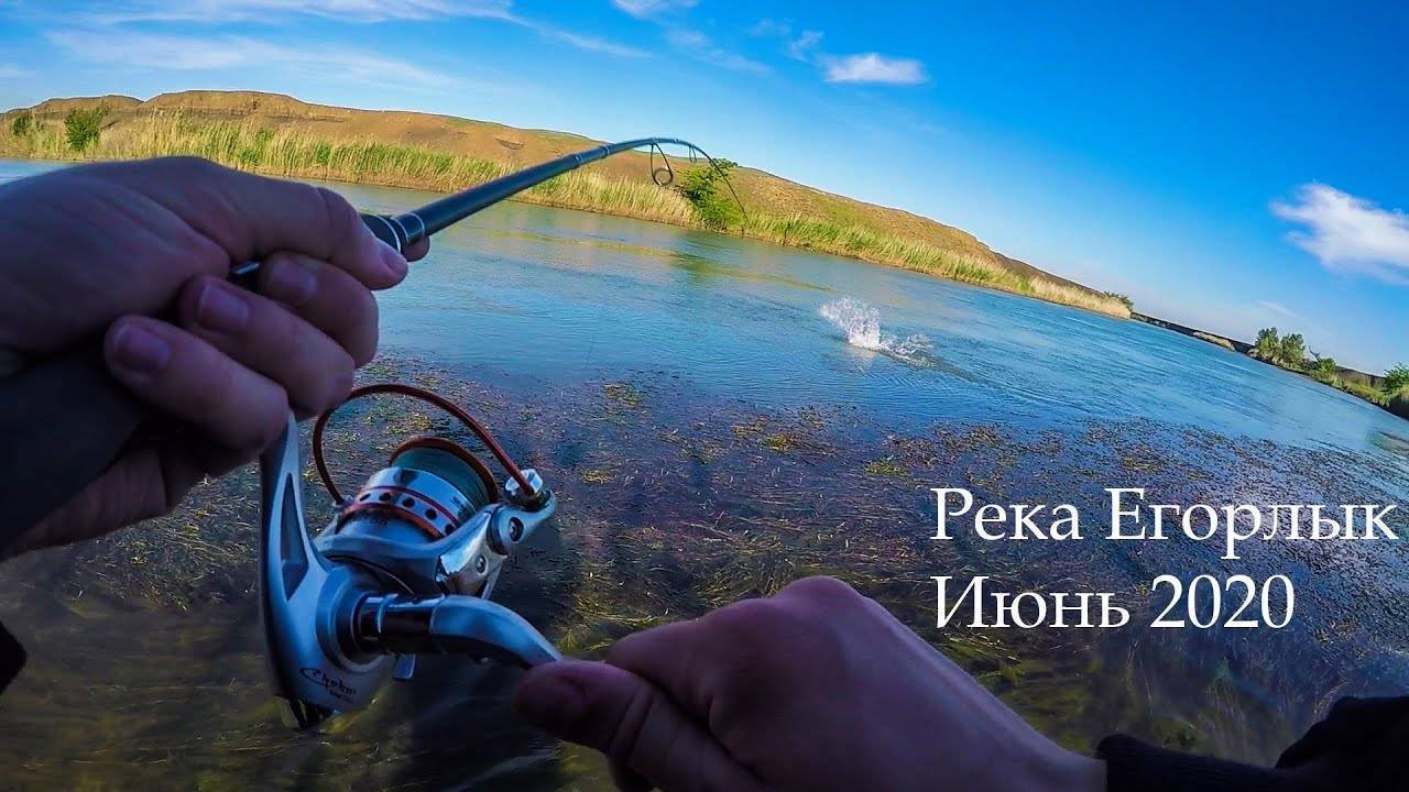 Платная рыбалка в ставропольском крае: водохранилище, правоегорлыкский канал и другие места лова