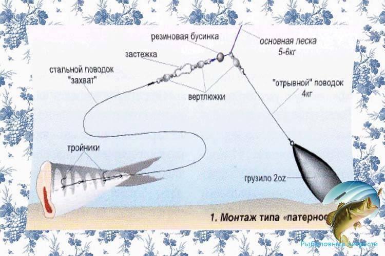 Прогноз клёва щуки в подмосковье на неделю
