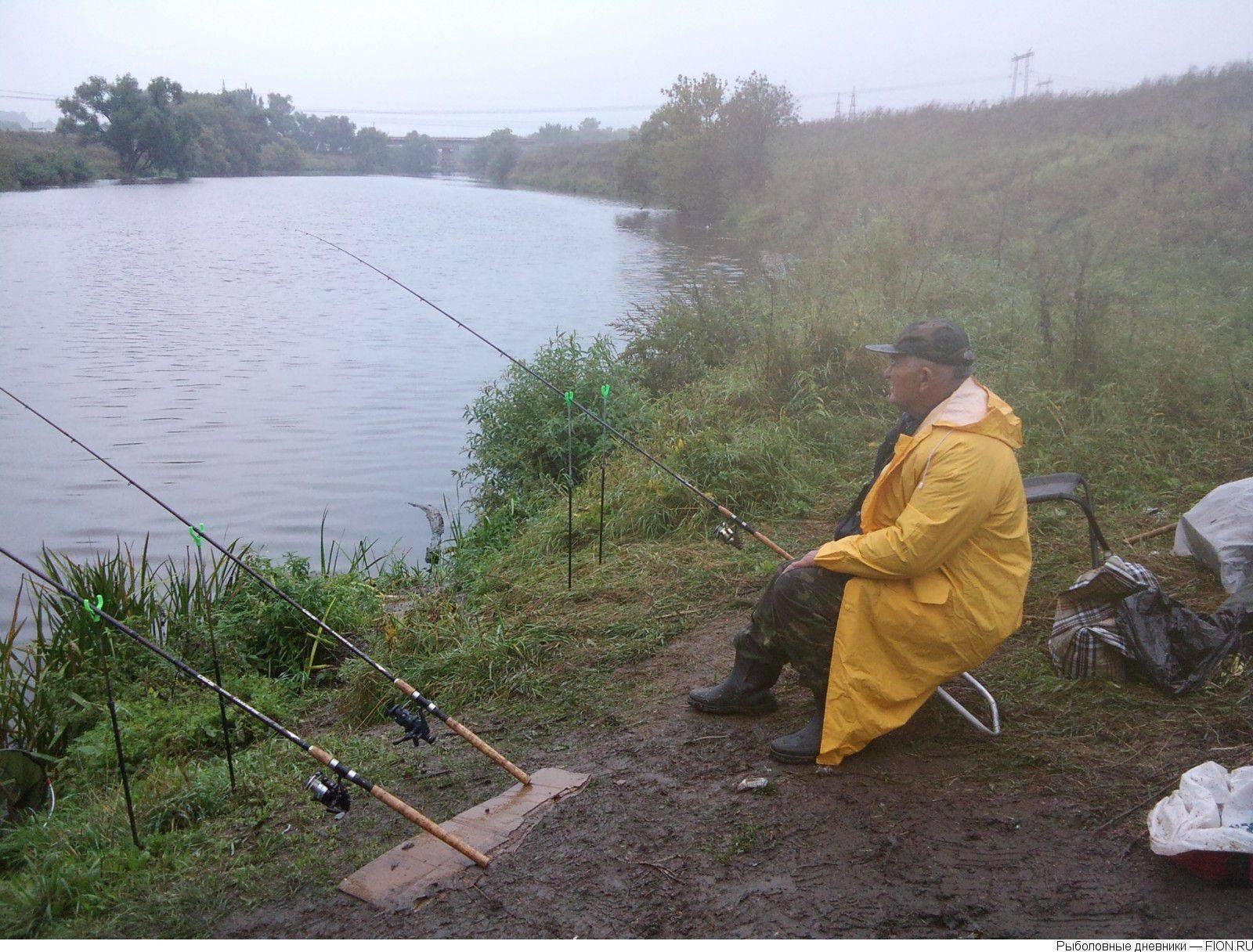 Река кия кемеровской области: карта рыбных мест, особенности рыбалки, какая рыба водится