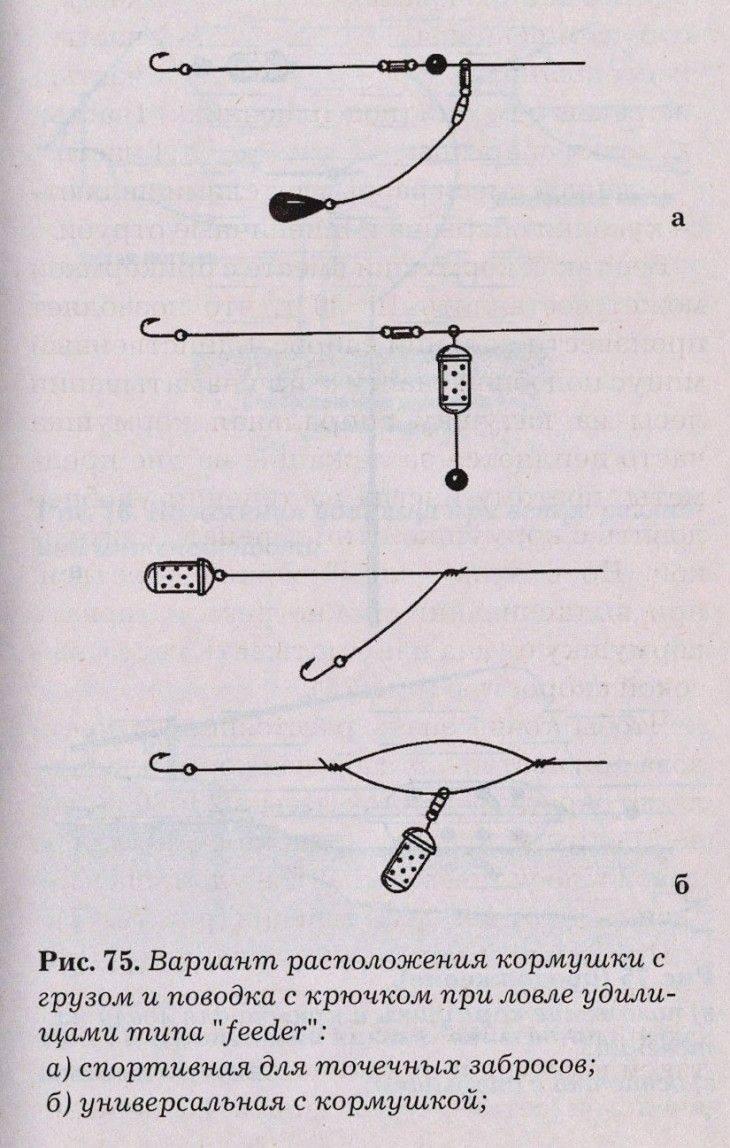 Карповые оснастки и монтажи для успешной ловли