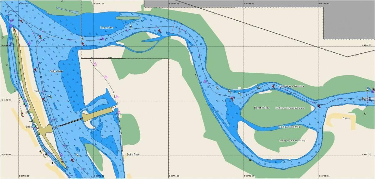 Многообразный мир растений и животных реки волга