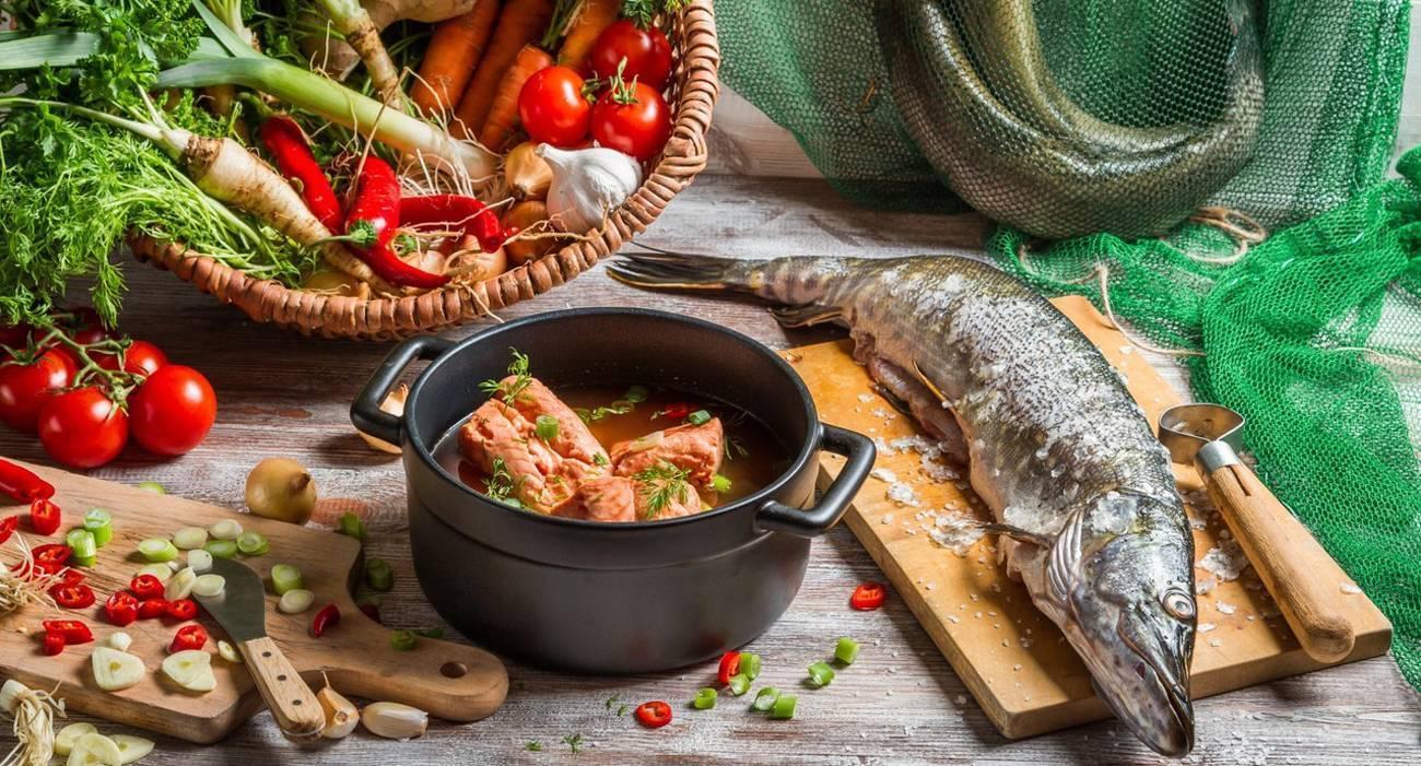 Как приготовить щуку: рецепты вкусных блюд