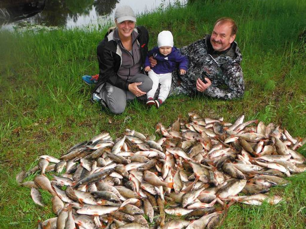 Рыболовные базы в дмитровском районе на карте: рейтинги и отзывы на лучшие рыболовные базы дмитровского района 2020