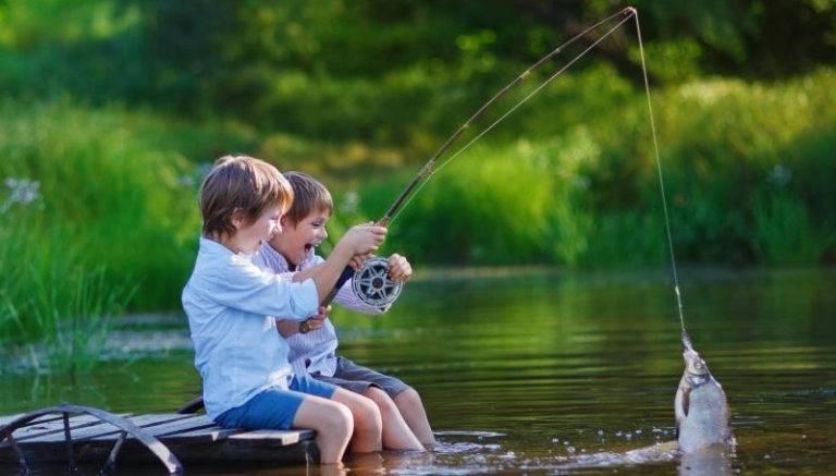 Сонник вытащить рыбу удочкой. к чему снится вытащить рыбу удочкой видеть во сне - сонник дома солнца