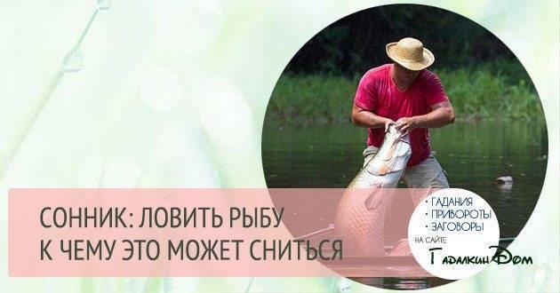 Рыба на удочке