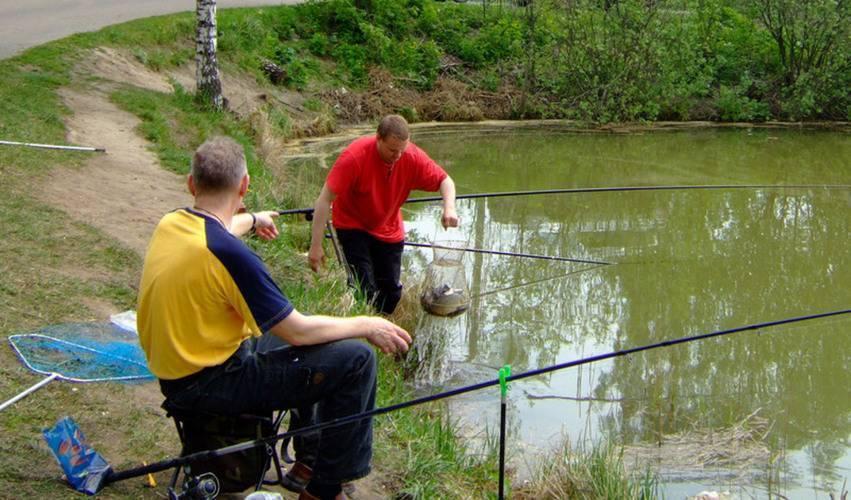 Платная рыбалка в бисерово - цены, контакты, маршрут и отзывы о рыбалке