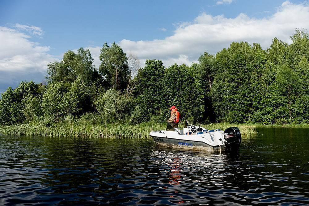 Рыбалка в иваново и ивановской области на волге: куда съездить, прогноз клёва, весенняя рыбалка в ивановской области, платная рыбалка