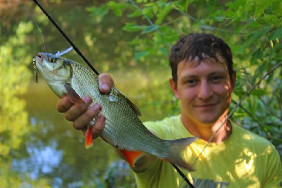 Ловля язя на спиннинг: снасти, приманки и тактика ловли