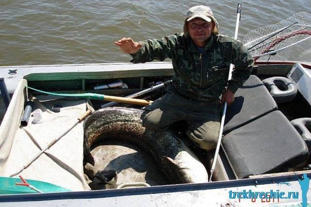 Современная поплавочная снасть для рыбалки на волге. часть i - рыбалка на ахтубе с комфортом - база трёхречье