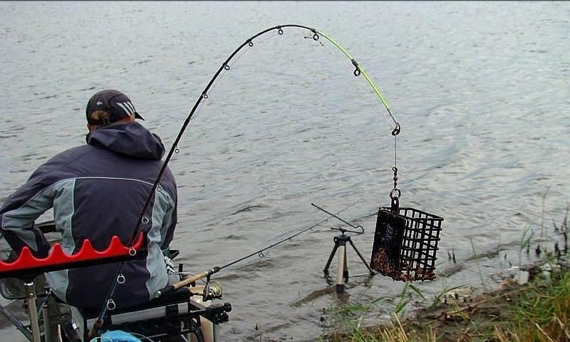 Ловля карася на фидер в стоячей воде