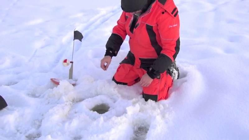 Ловля щуки на жерлицы зимой: практические советы
