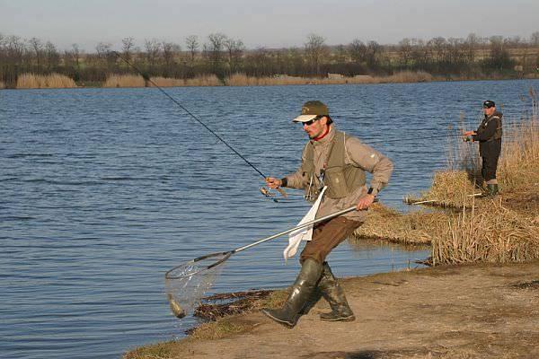 Как рыбачить на спиннинг – когда и кого можно ловить?