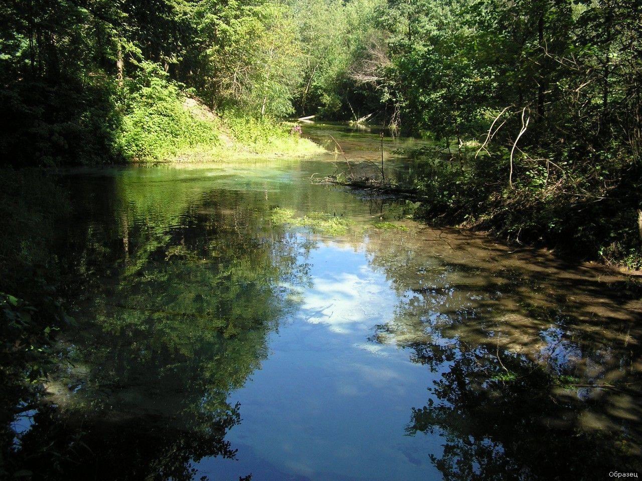 Сплав по реке малая кокшага республика марий эл