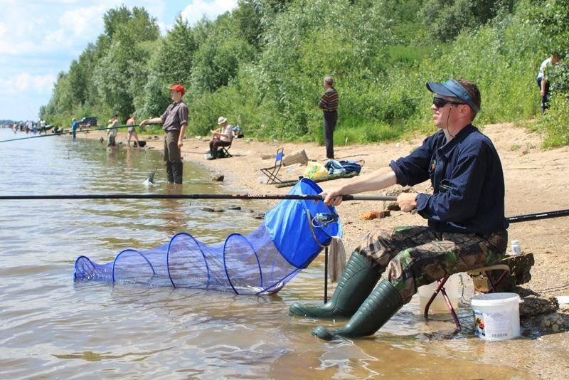 5 мест для платной рыбалки в самаре — на природе — выбирай.ру — самара