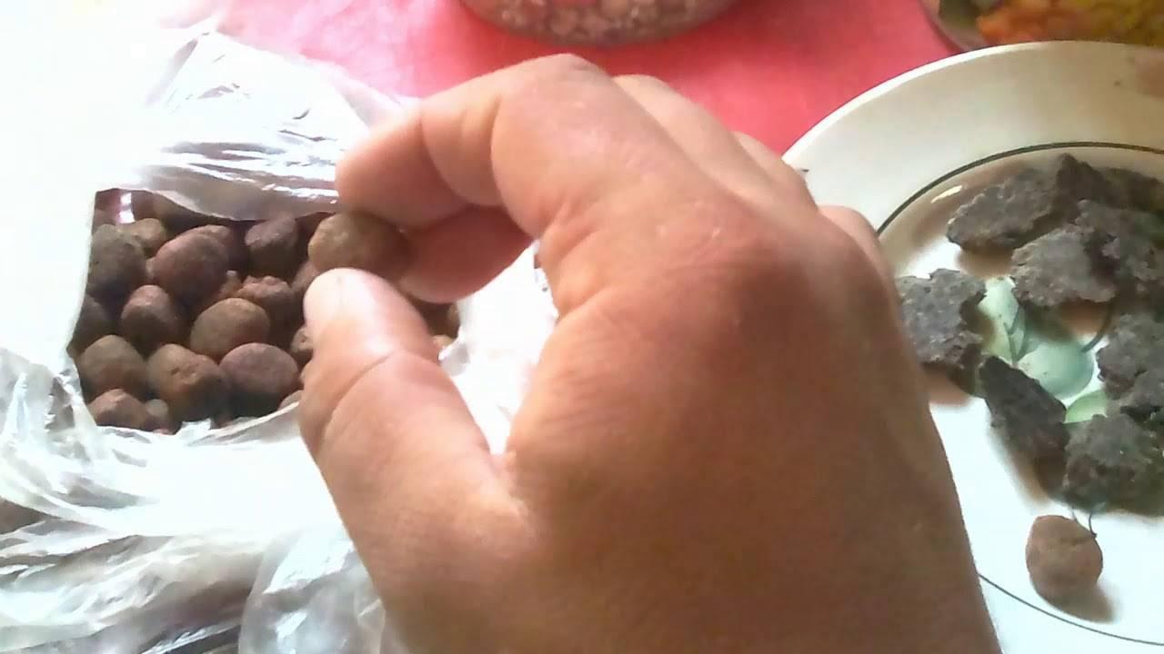 Бойлы своими руками: рецепты для рыбалки на карпа, как сделать в домашних условиях