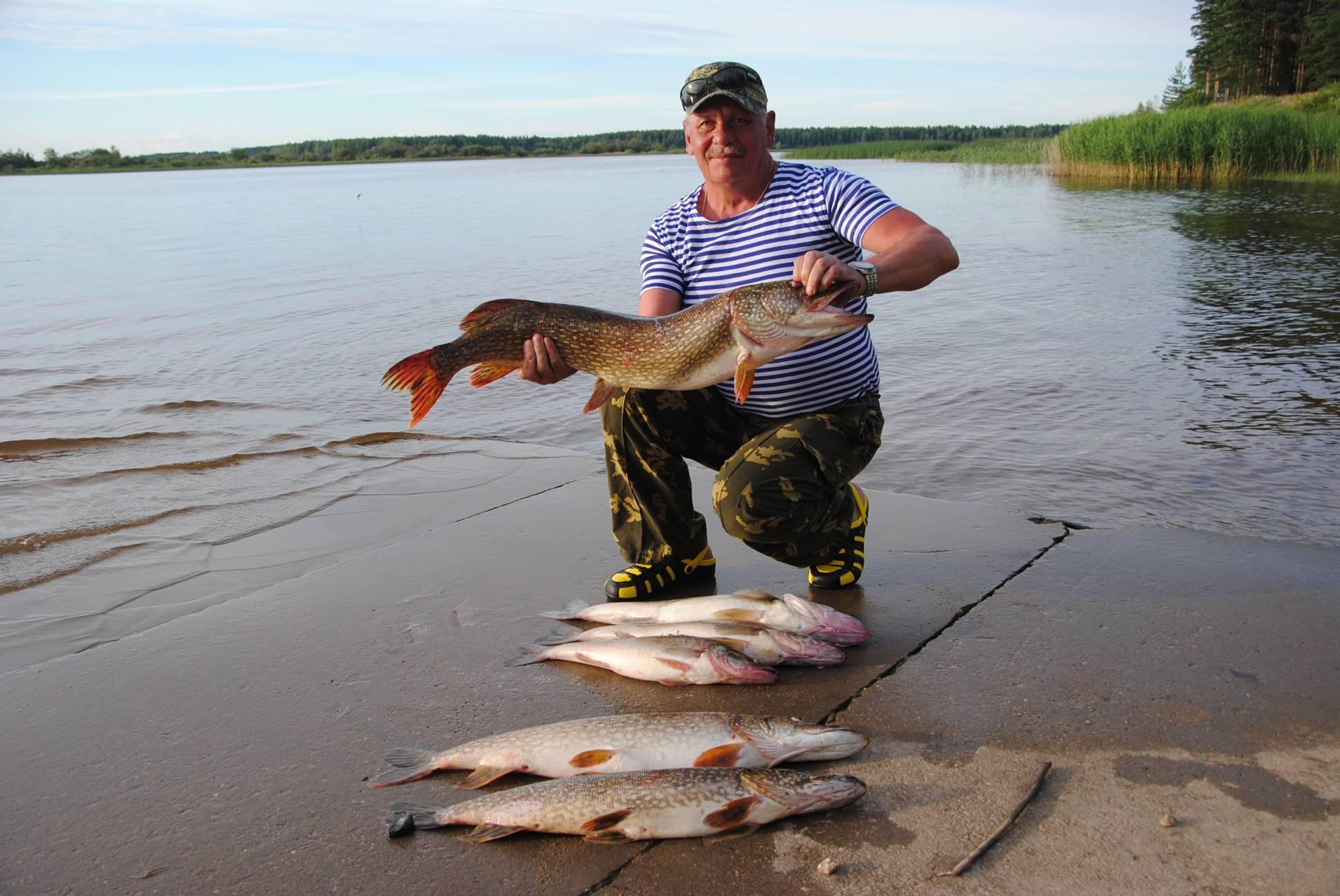 Пять простых, но эффективных способа, как моментально отсечь мелочь на рыбалке и ловить только крупную рыбу