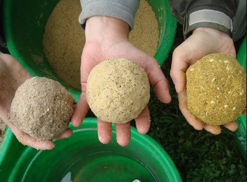 Как готовить семена конопли для ловли карпа. советы и рецепты