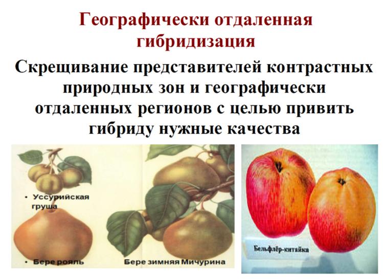 Рыбалка в ростовской области: основные места ловли