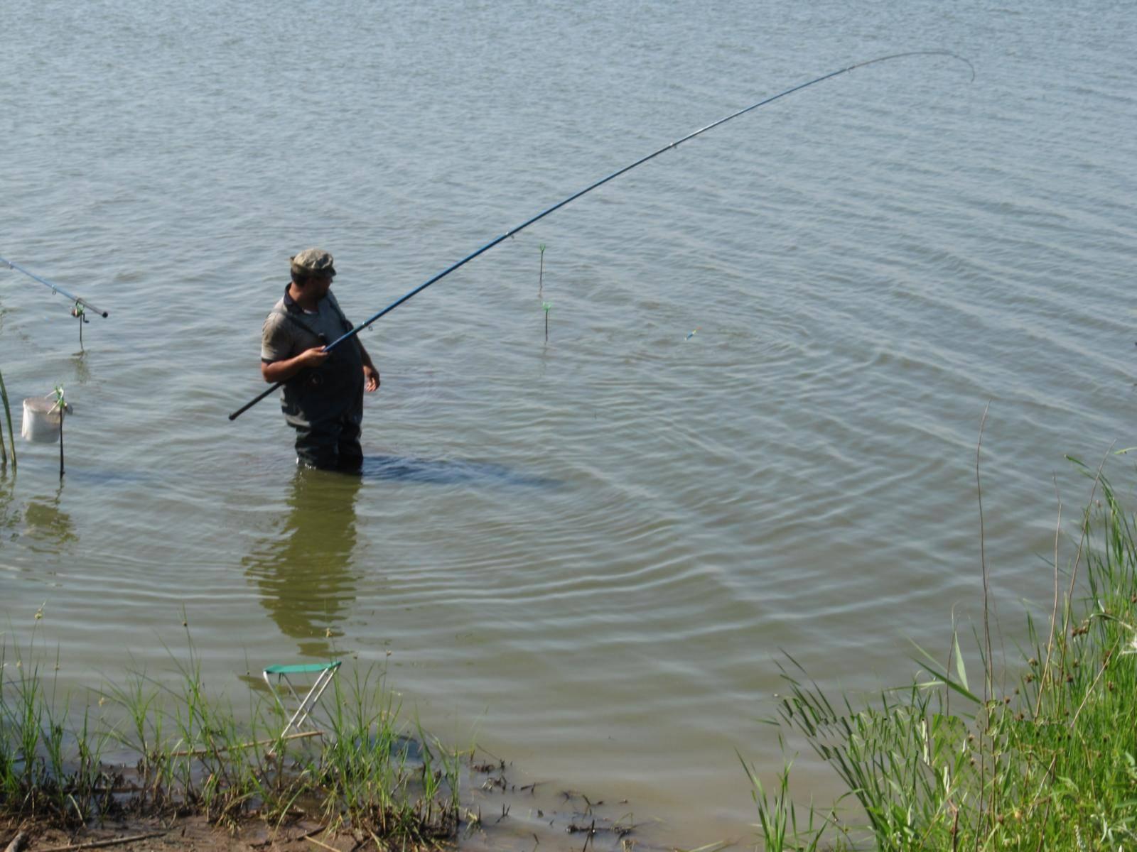 Платные пруды в самарской области для рыбалки