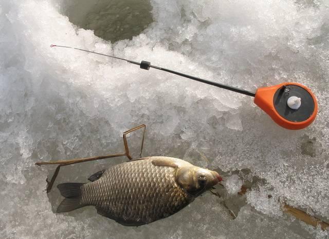 Как поймать карася зимой на мормышку