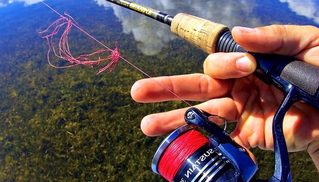 Требования и особенности выбора основной лески и поводка в карпфишинге - читайте на сatcher.fish