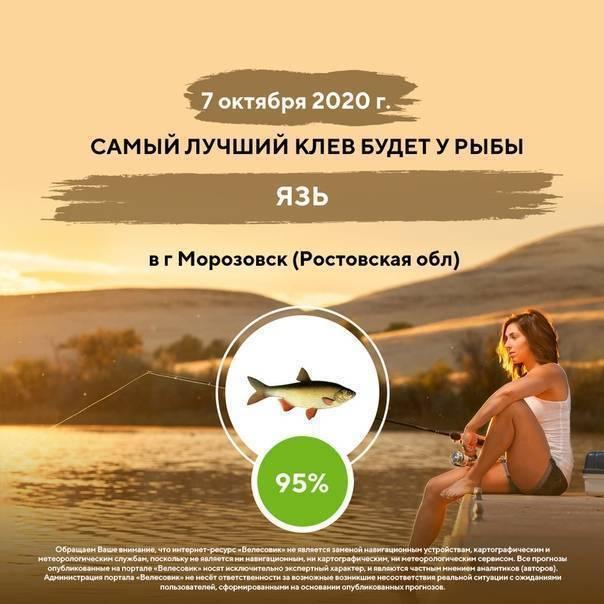 Рыбалка в соль-илецке - отличный отдых для всей семьи