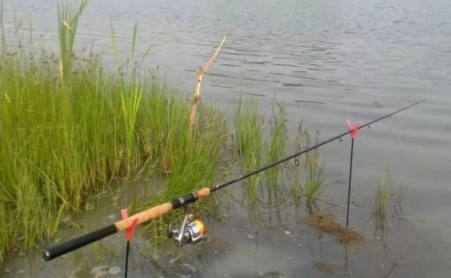 Как ловить на пикер? 105 фото снастей и принцип техники лова рыбы