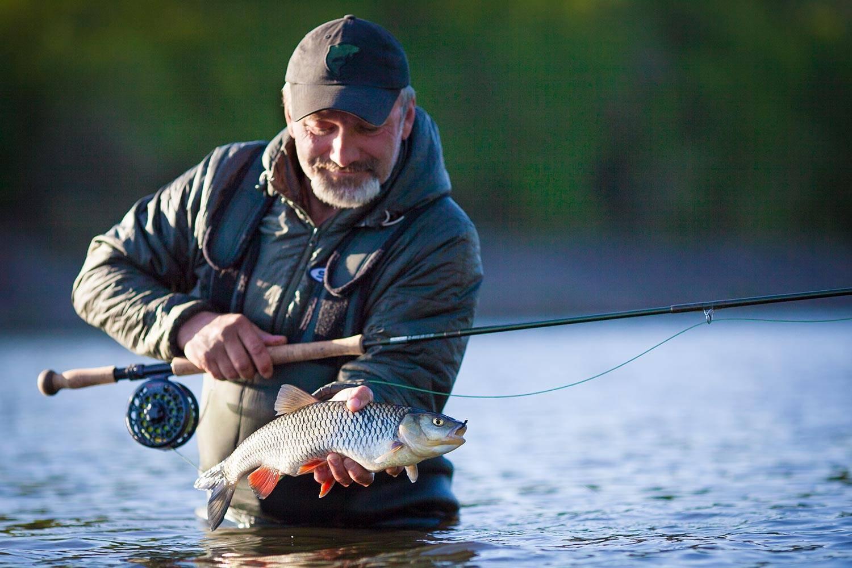 Когда клюет рыба – условия для лучшего клева