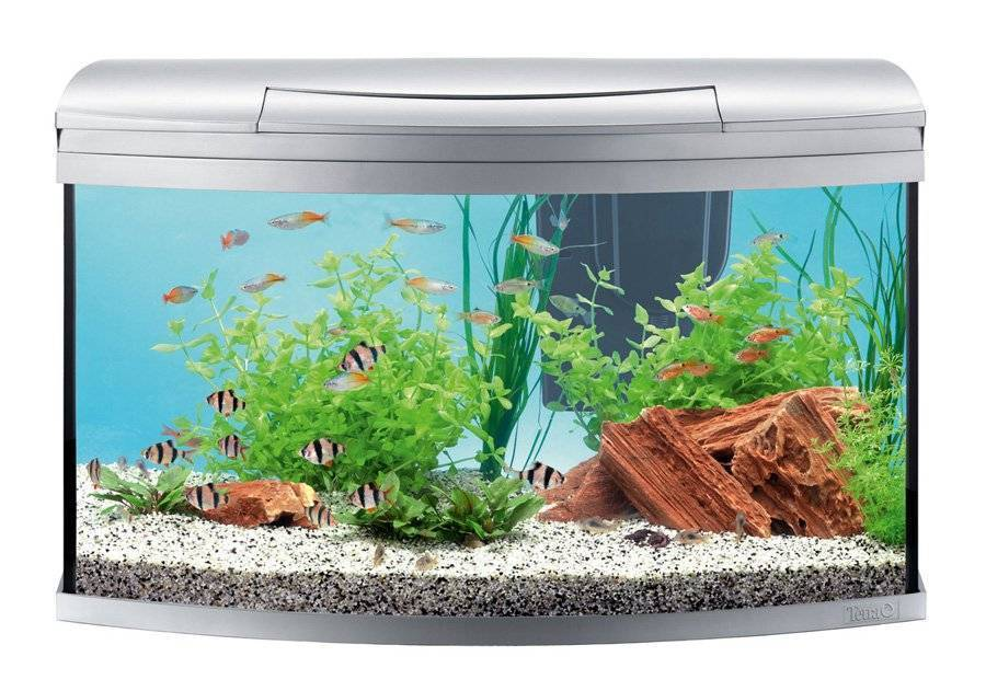 Рейтинг лучших производителей аквариумов на 2020 год