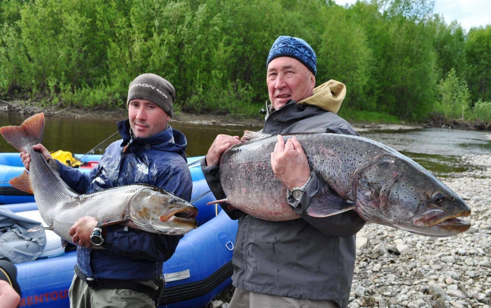 Рыбалка на белом море - про рыбалку