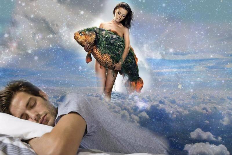 К чему снится щука женщине: замужней, незамужней, девушке, беременной – толкование по сонникам