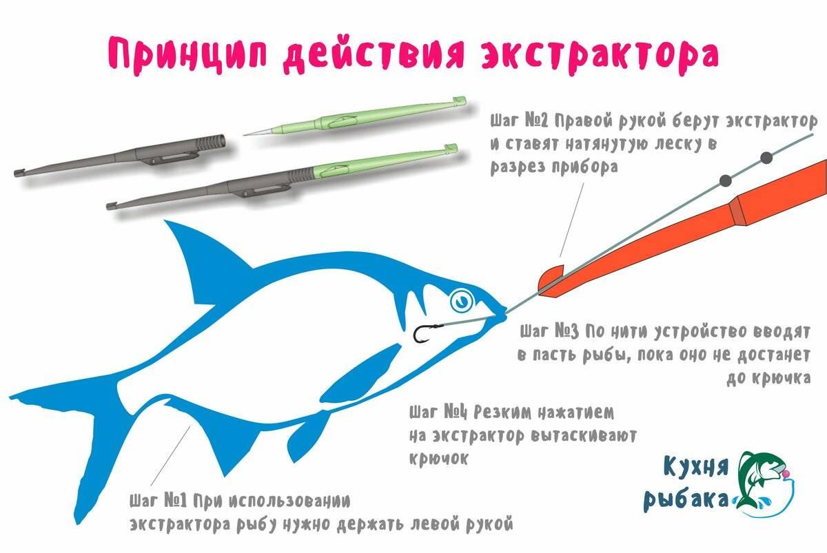 Экстракторы для рыбалки