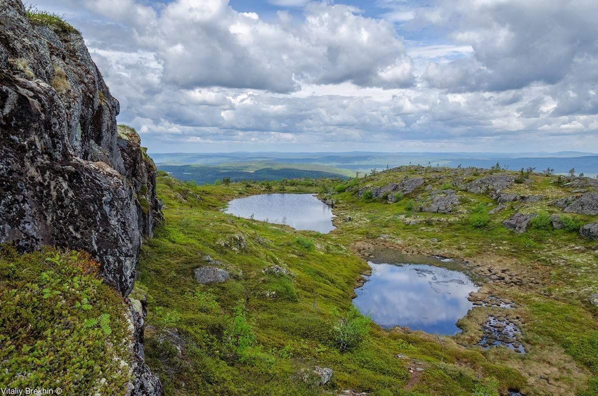 Водлозерский национальный парк: как добраться и что посмотреть | карта лучших мест