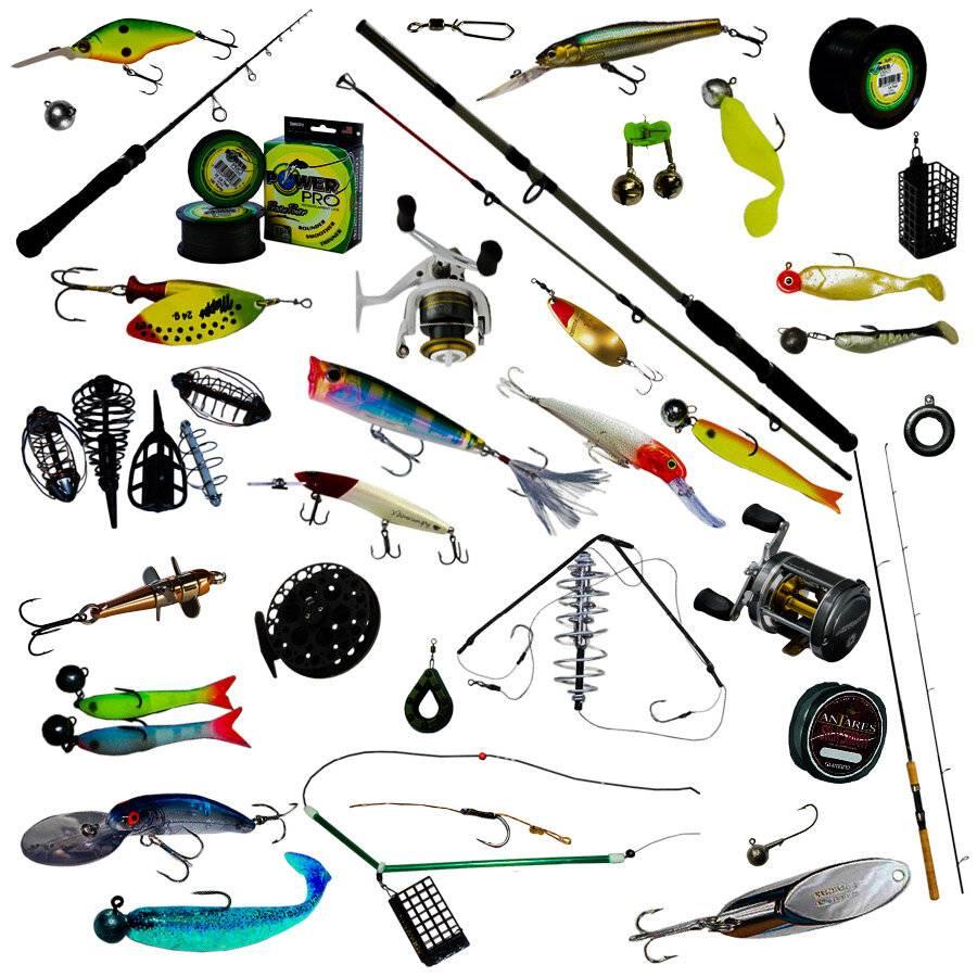 Где и как ловить красноперку на ахтубе – ловля на поплавок - рыбалка на ахтубе с комфортом - база трёхречье