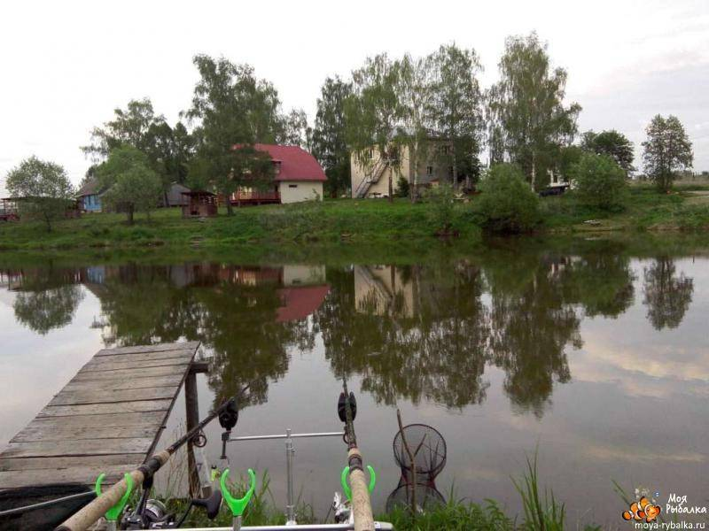 ✅ рыбалка в коротыгино отчет - danafish.ru