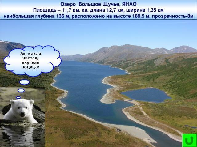 Щучье озеро в комарово (хаукиярви)