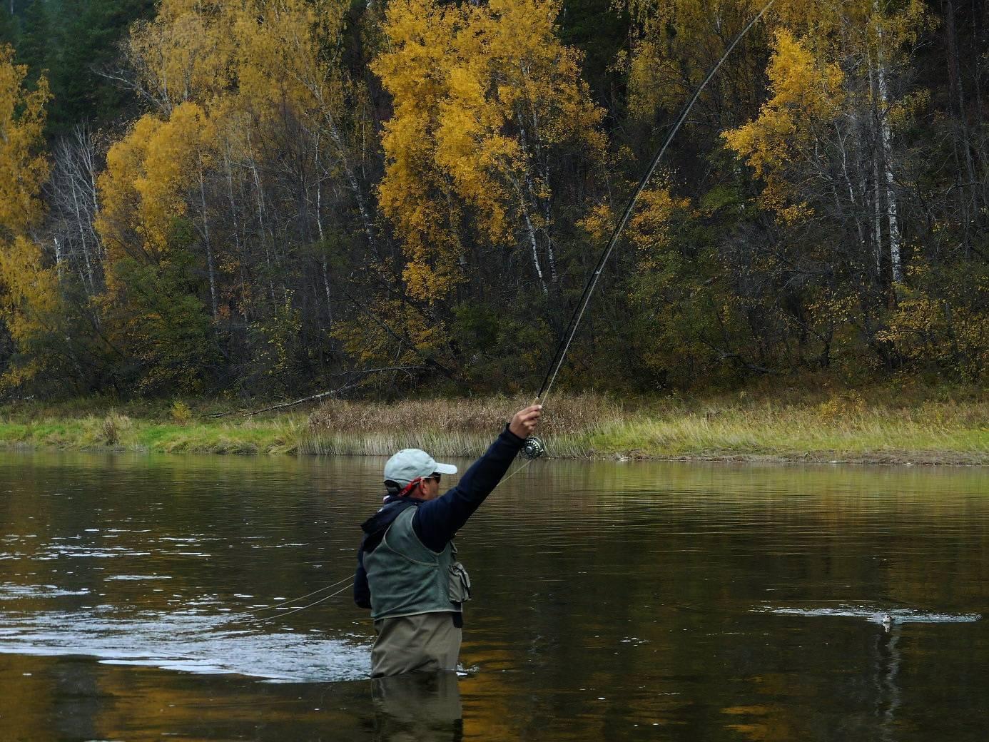 Донная снасть для ловли на течении| ходовая донка для ловли на реке