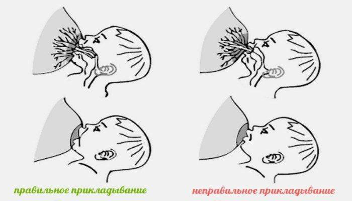 Естественное вскармливание: как подготовить грудь?