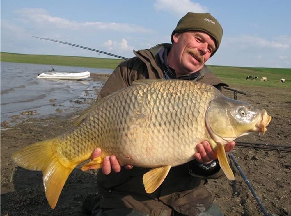 Где сейчас ловят рыбу в ленинградской области
