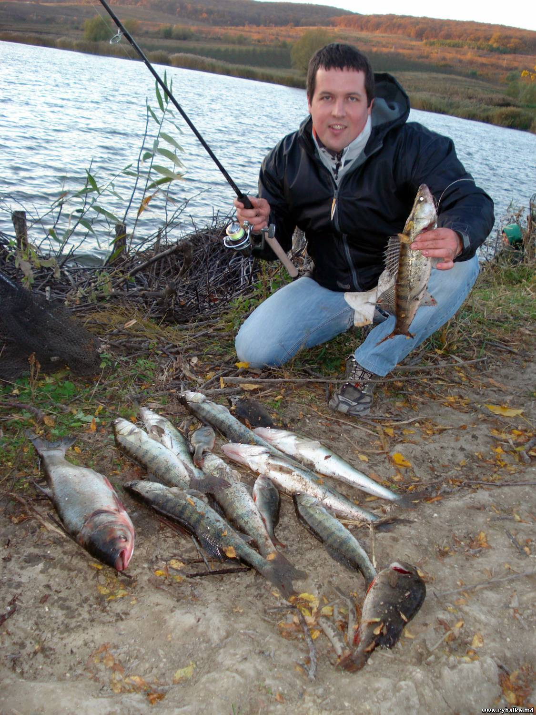 Рыбалка в егорьевске: особенности ловли в рыбхозах егорьевского района, какая рыба водится