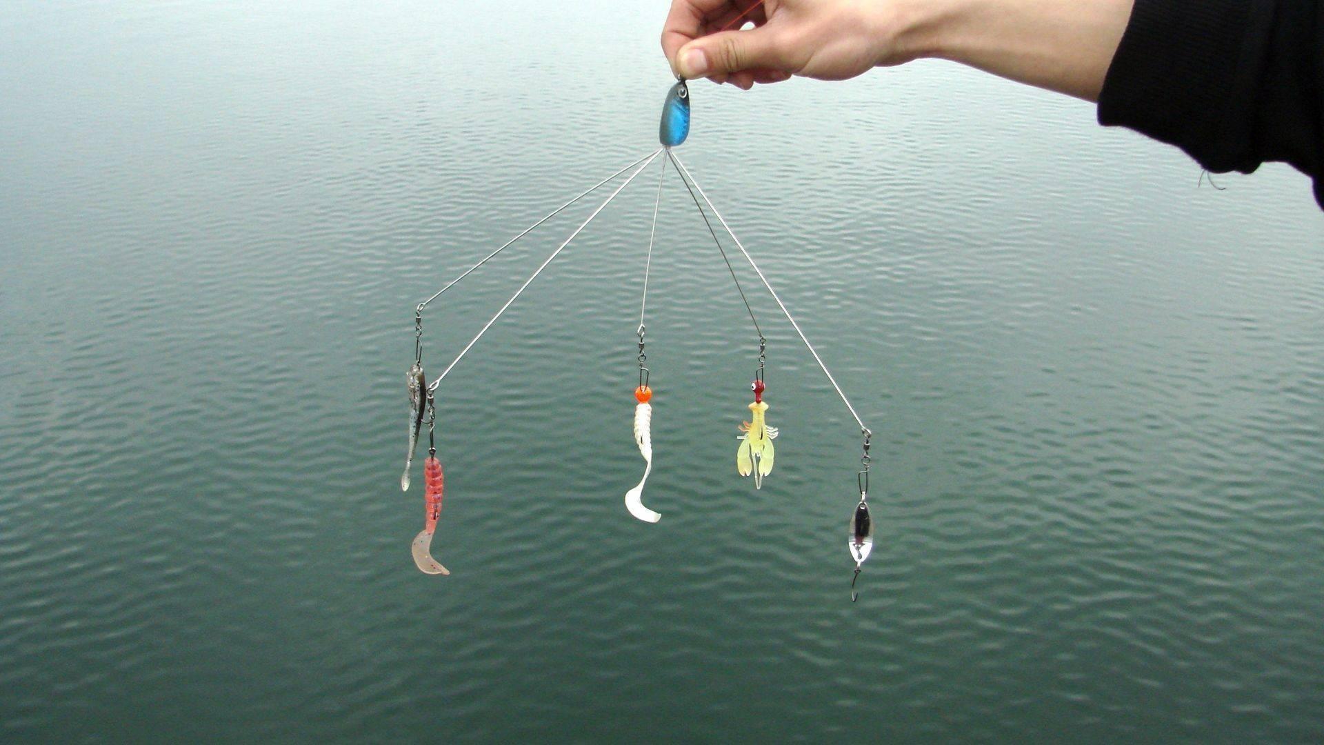 Донка для ловли крупной рыбы на реке