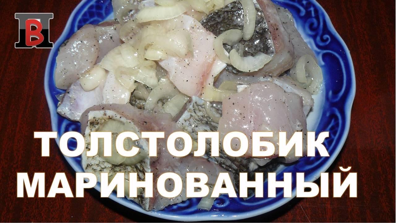 Толстолобик в уксусе: маринуем вкусно