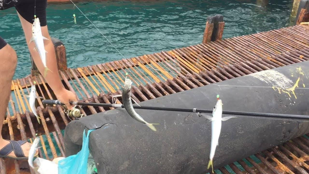 Апсны. рыбалка в стране души. часть 2