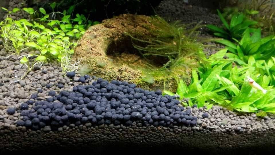 Лучшие разновидности грунта для аквариума и советы какой подобрать новичку