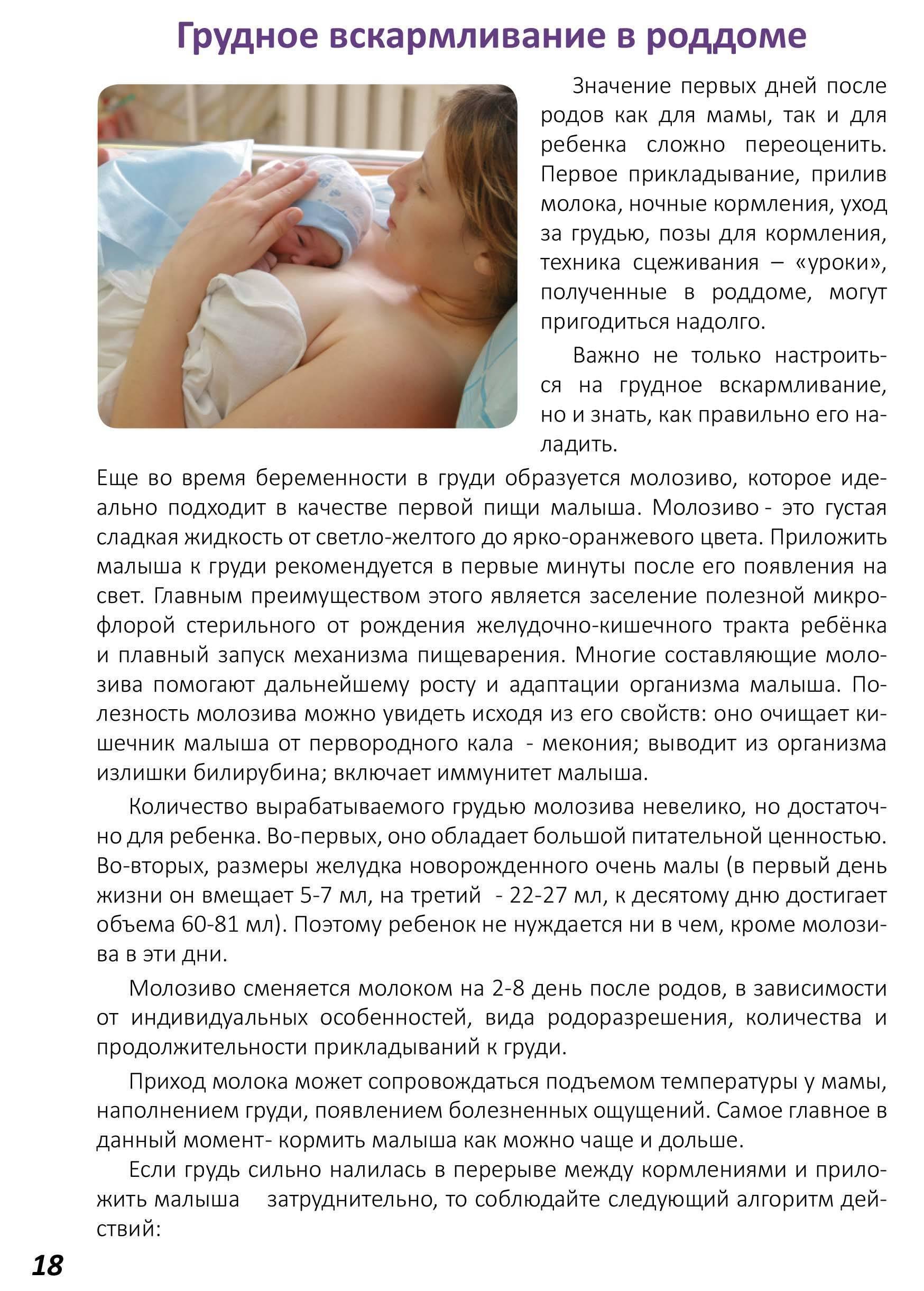 Подготовка к кормлению грудью. что нужно знать до начала грудного вскармливания