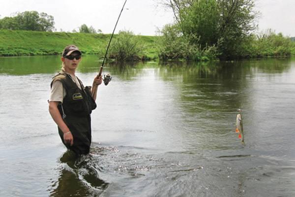 Ловля леща на донку - монтаж снасти своими руками, рыбалка весной, летом, осенью, наживки и прикормка, видео