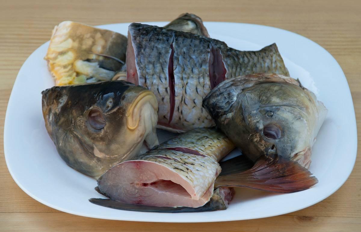 Уха рыбная