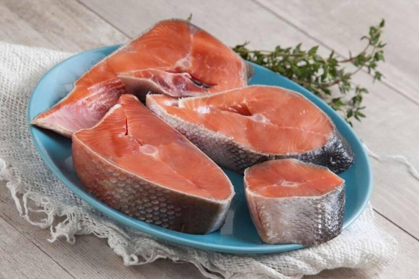 Рыба кижуч: фото