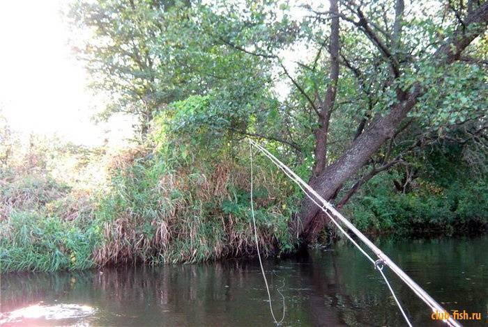Ловля ельца на реках летом весной осенью зимой с применениями разных снастей прикормками и наживками для ельца
